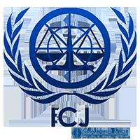 Международное право, международный суд, защита в международном суде, международный контракт, международный спор | Объединенные Юристы